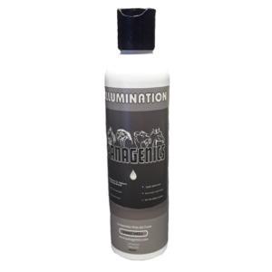 Panagenics Illumination shampoo
